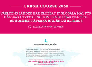 Crash Course 2030